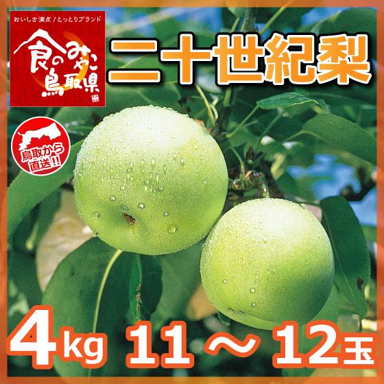 nashi35-2-560